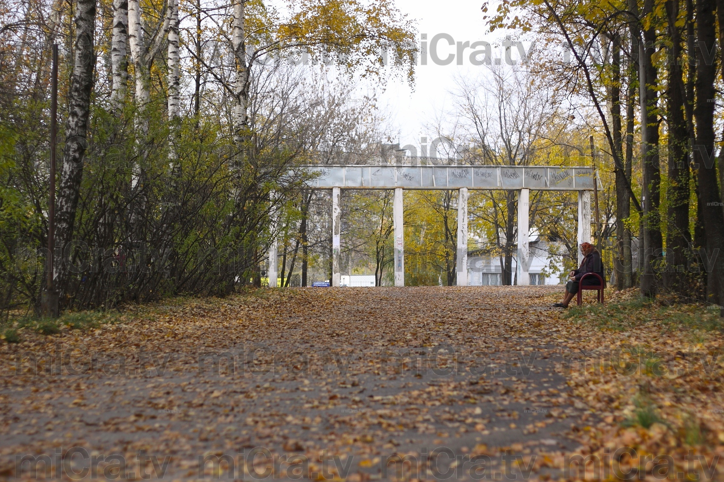 Golden autumn. Park.